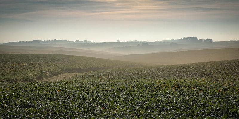 Rolling hills and fog near Iowa City